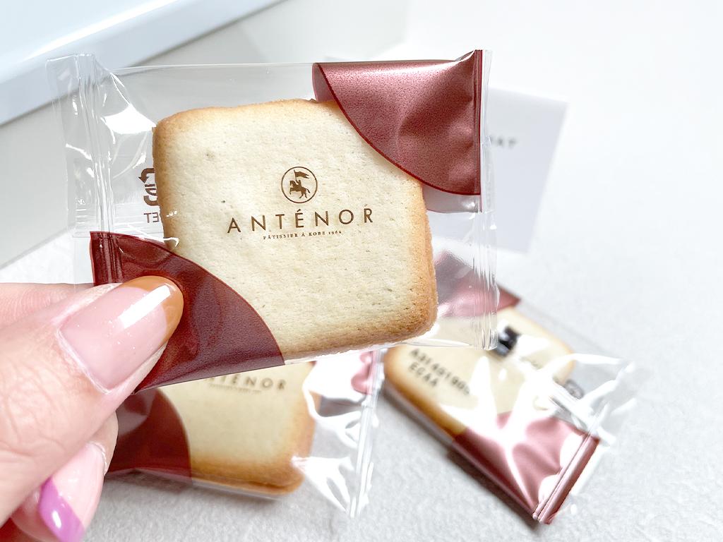 お取り寄せ アンテノール ANTENOR クッキー 焼き菓子 ラングドシャ 缶入り 缶入りクッキー シトロン 神戸スイーツ 神戸みやげ ラング・ド・シャ・ショコラ